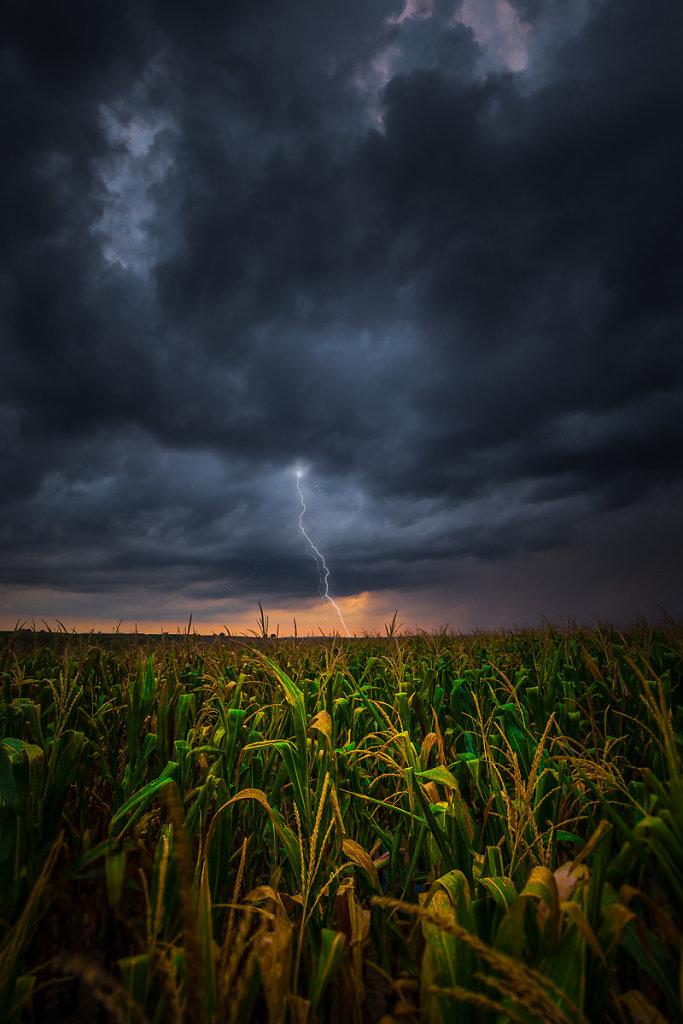 Moravia-Storm-Ryszard-Lomnicki-1200.jpg